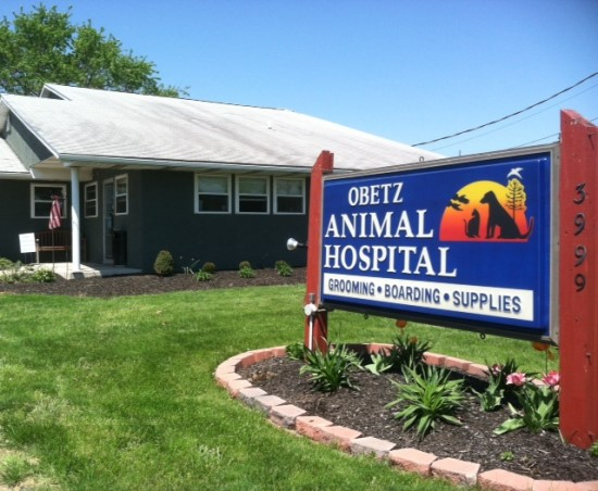 Obetz Animal Hospital is your choice for veterinary care in Columbus, Ohio
